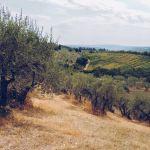 Włochy praktycznie – czyli, co warto wiedzieć, informacje praktyczne i porady