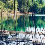 Jeziora Plitwickie – jaką wybrać trasę, jak zwiedzać, ile kosztują bilety?